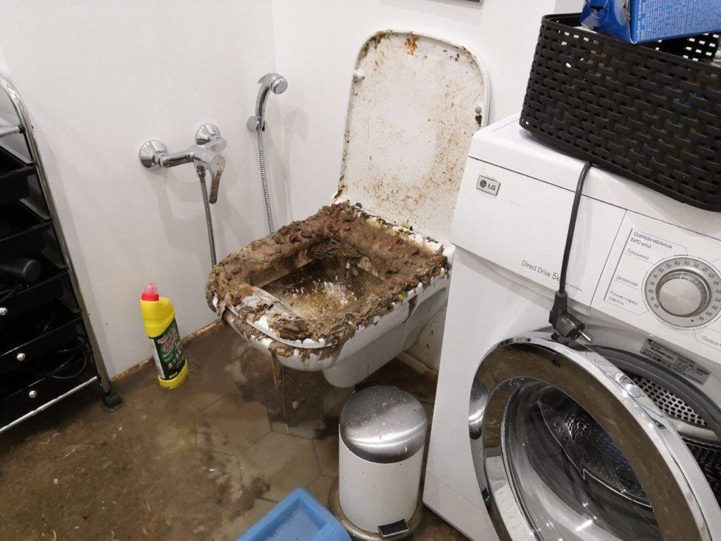 Уборка после прорыва канализации